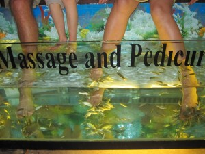 Pedicure with Cleaner Fish