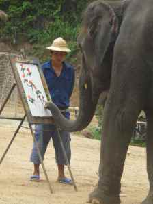 Elephant painting with mahout standing by. Maesa Camp, Chiang Mai, Thailand.