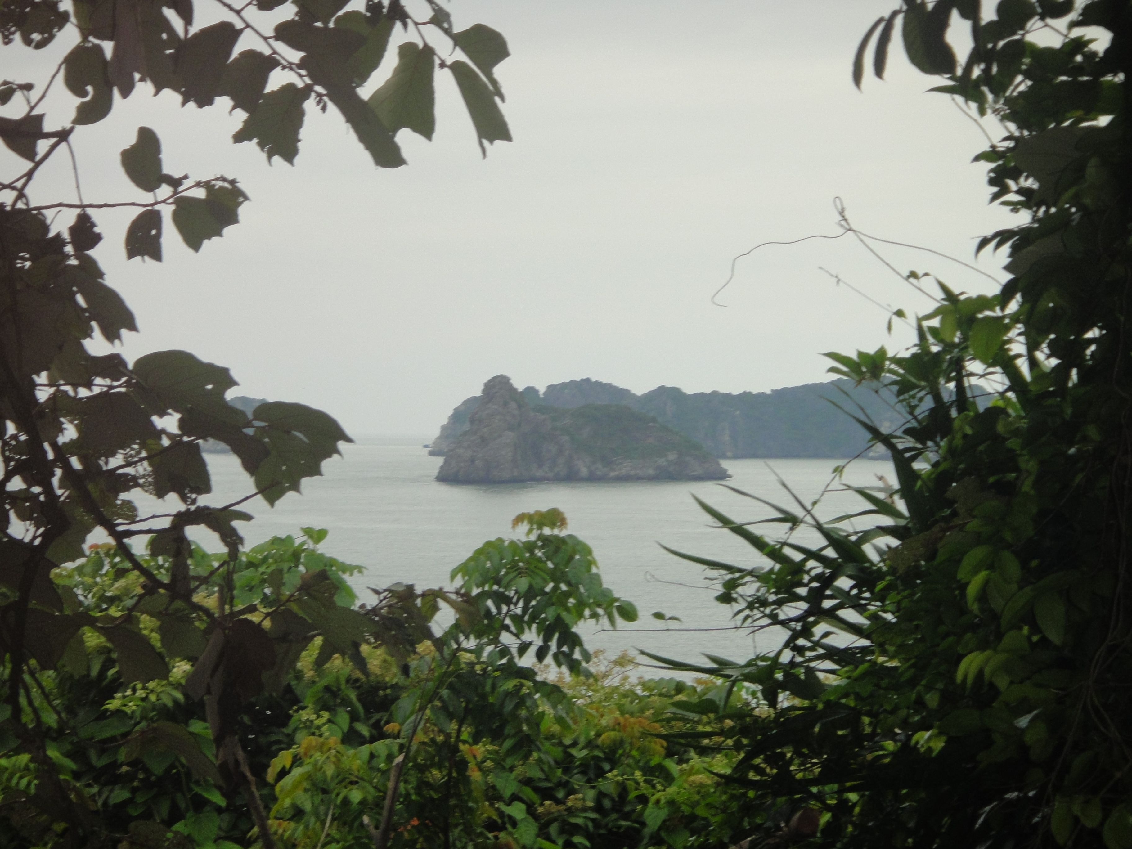 view over karst islands framed by trees, monkey island, halong bay, vietnam
