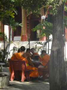Novices studying in the shade, Wat Phra Singh, Chiang Mai, Thailand.