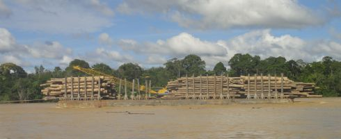 Three platforms laden with forest timber plough their way down the Batang Rejang, Sarawak, Borneo, Malaysia.