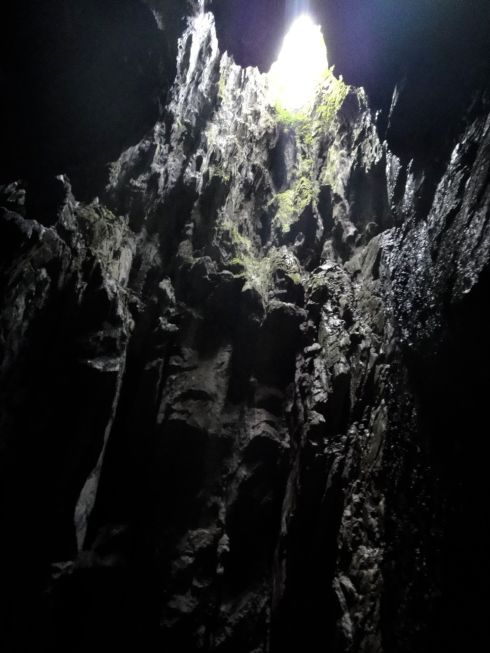Dark grey limestone and algae ascend in jagged shards to daylight. Clearwater Cave, Mulu National Park, Sarawak, Borneo.