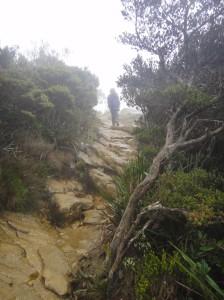ascending the ochre slabs, Mount Kinabalu.