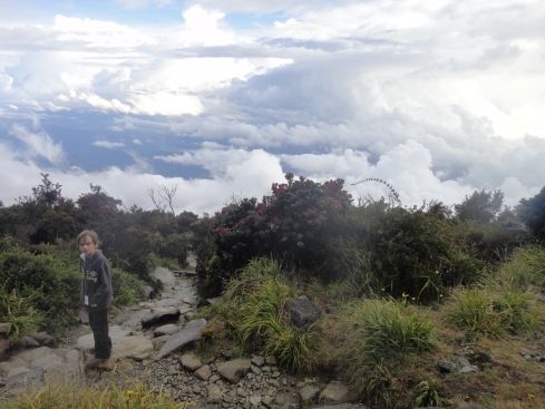 approaching the granite face of mount kinabalu