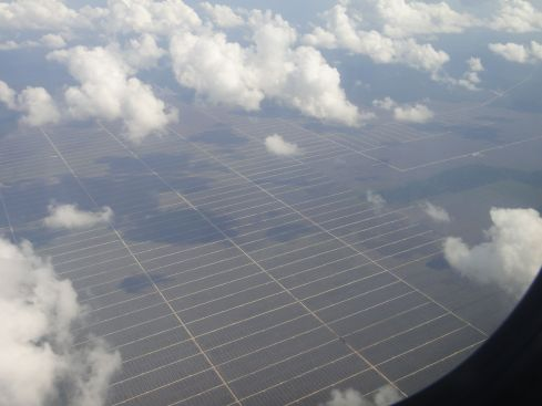 Aerial view of vast tracts of land seeded with oil palms, forming a grid. Sarawak, Borneo, Malaysia.