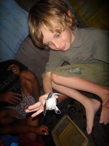 Z holding a week old baby turtle, Pulau Derawan, Indonesia.