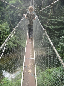 Z making his way along an aerial suspension bridge at canopy level, over a jungle river. Mulu National Park, Sarawak, Borneo, Malaysia.