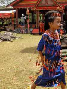 Little girl running across the grass, wearing silk and beads: Torajan funeral. Tana Toraja, Sulawesi, Indonesia.