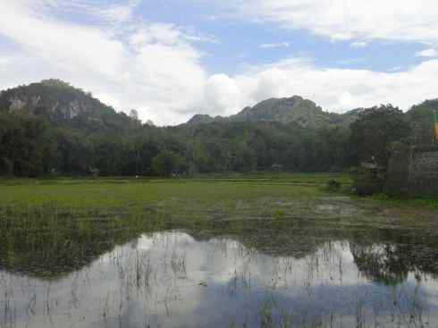 Hills reflected in flooded paddyfield, Tana Toraja, Sulawesi, Indonesia.