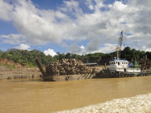 logging barge in borneo